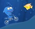 כריש על אופנוע