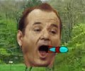 Bill Murray Missiles