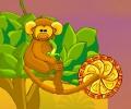 ג'ונגל הקופים