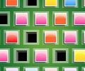 כוורת הצבעים