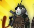 הארנב הצלף