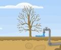 הצילו את העץ