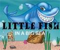 דג קטן בים הגדול