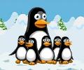 הרפתקאות הפינגווין