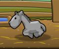 HorseRancher