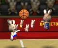 כדורסל ארנבים