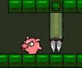 החזיר הלוחם