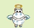 פרה קדושה